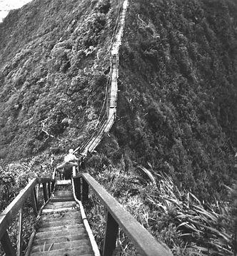 Dave Jessup_Haiku Ladder.jpg