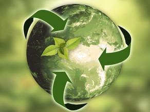 Wie die Umgebung die Gründung nachhaltiger Start-ups beeinflusst