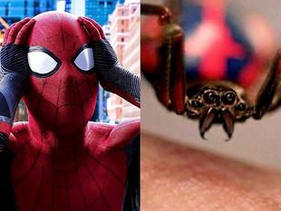 Bolivia: 3 niños se dejan picar por una viuda negra para conseguir los poderes de Spiderman