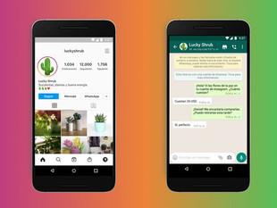 Instagram habilitó la opción de agregar el botón de contacto a WhatsApp para los negocios