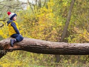 Estar rodeado de espacios verdes en la infancia puede mejorar la salud mental en la edad adulta