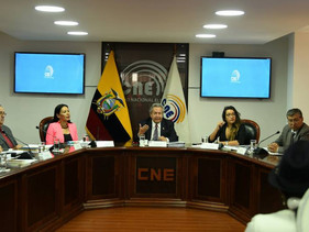 CNE analiza si echa abajo plan electoral ya aprobado