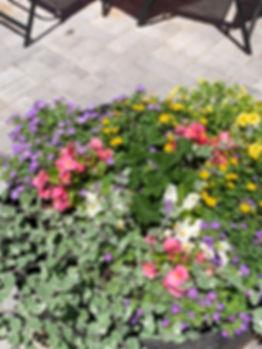 Flower Buckets.jpg
