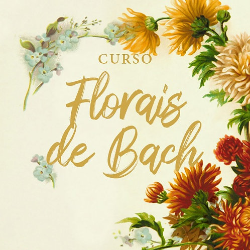 Curso de Florais de Bach com Fabíola Gonçales