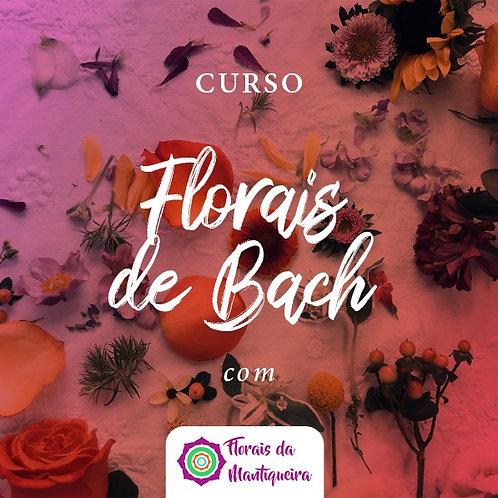 Curso Florais da Mantiqueira com Celso Zymon
