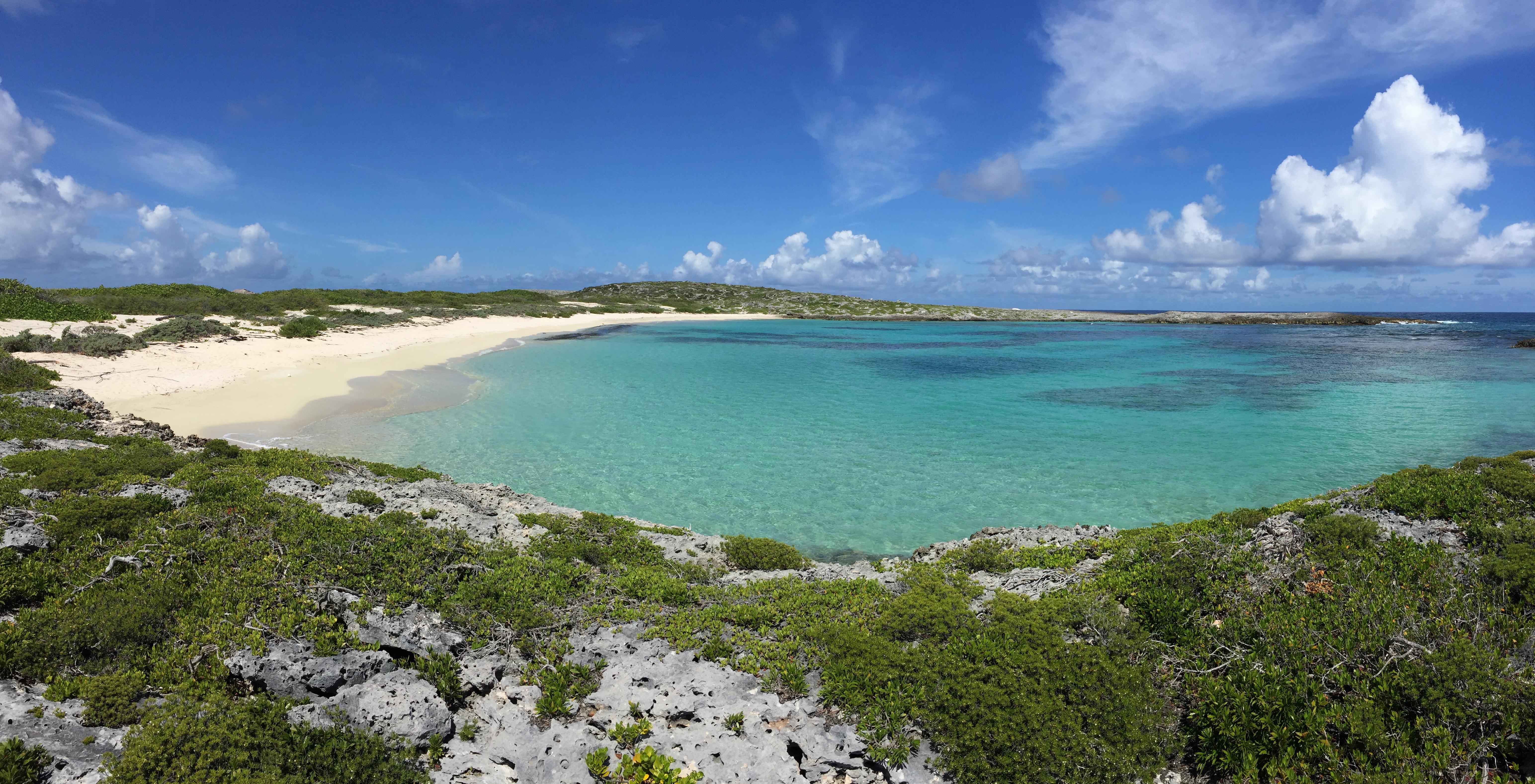 Scrubb Island