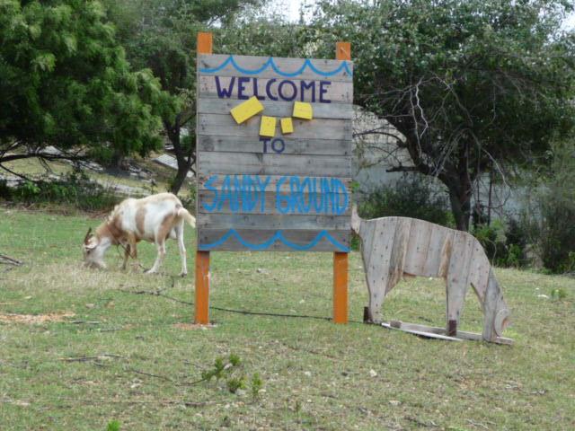 Anguilla-Goats-2