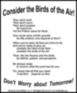Consider the Birds of the Air.jpg