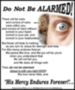 Do Not Be Alarmed.jpg