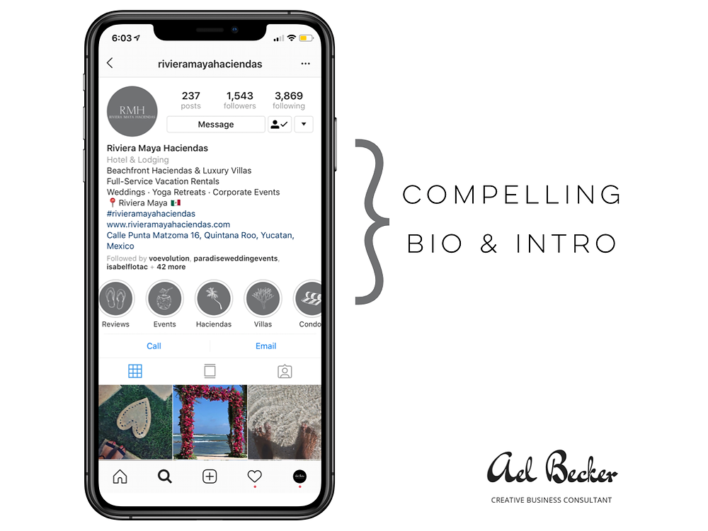 Instagram Business Bio and Highlights. Ael Becker Creative Business Consultant