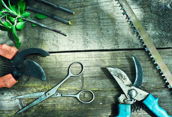 Garden tools on worn wodden bench