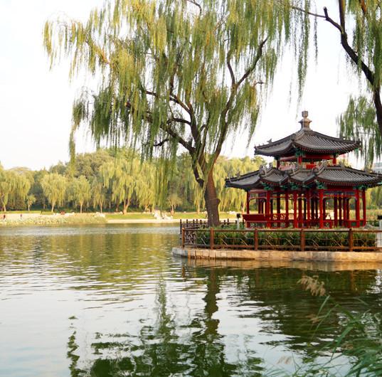 Chin. Park