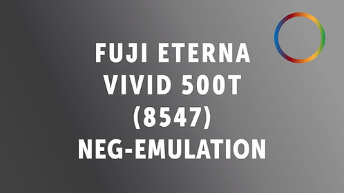 Fuji Vivid500T Negative Emulation (Motion Picture Stock)