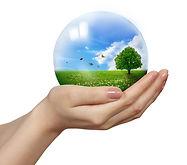 solution de nettoyage respectueuse pour l'environment