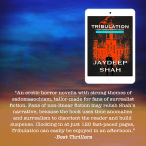 BestThrillers.com Review: Tribulation (Cops Planet #1)