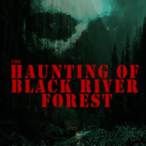 COVER REVEAL: The Haunting of Black River Forest