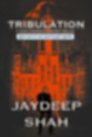 Tribulation - Book Cover new.jpg