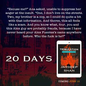 20 DAYS: Tribulation (Cops Planet #1)