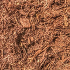 red oak mulch