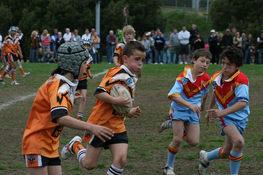 Tigers 2007.jpg
