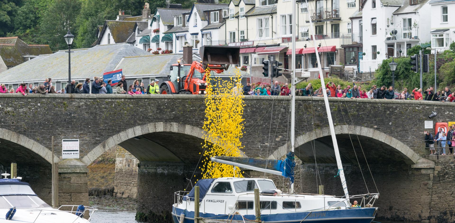 Cornwall Duck Race