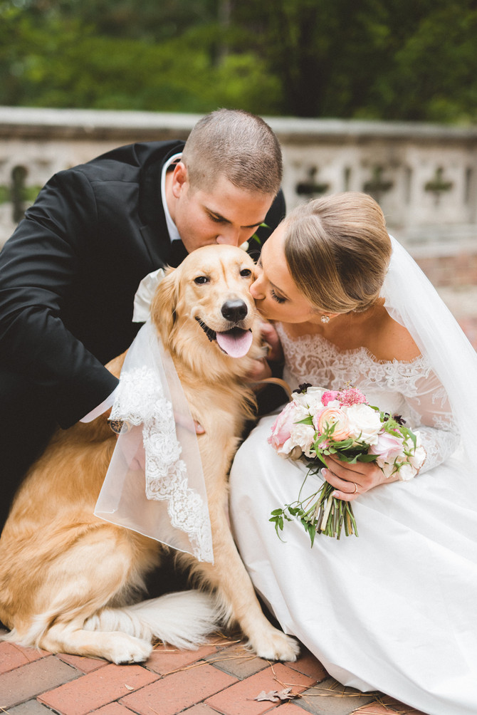 Furry Friends & Your Big Day!
