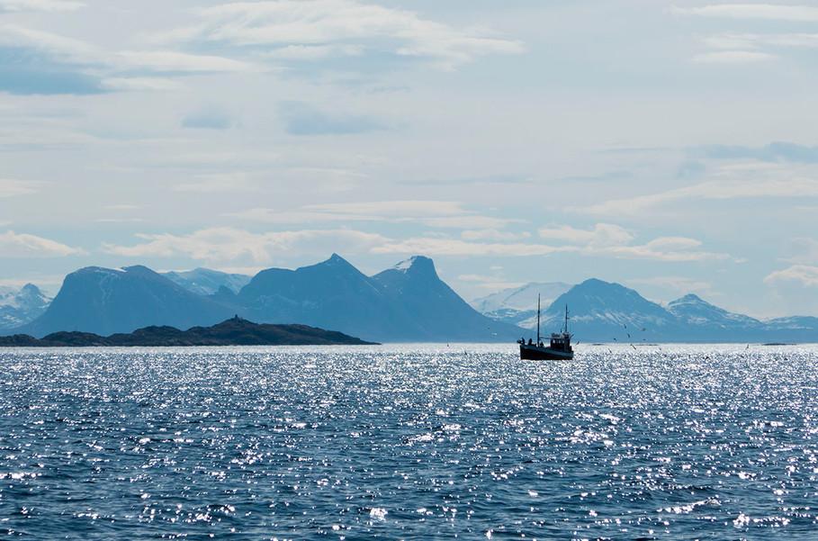 1280_gaukværøya_06.jpg