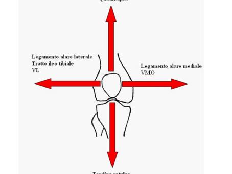 Patologia Femoro-Rotulea