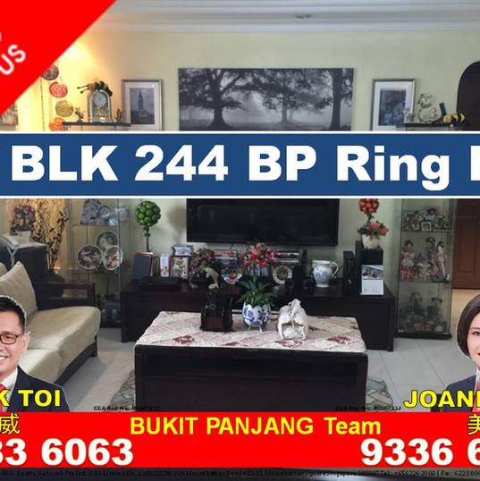 BP Ring Rd blk 244.jpg