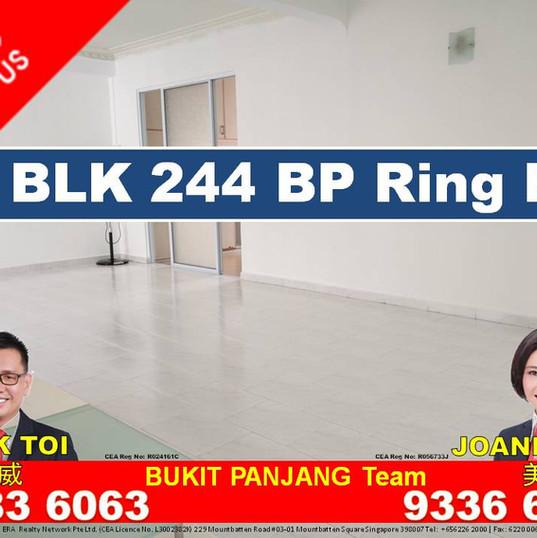 BP Ring Rd blk 244 #11.jpg