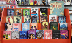 Young Adult Traditional Novels