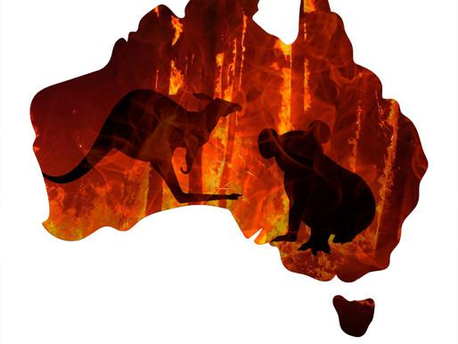 How Do Kids Feel: Australia is Burning