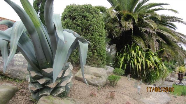 conception de jardin en bretagne