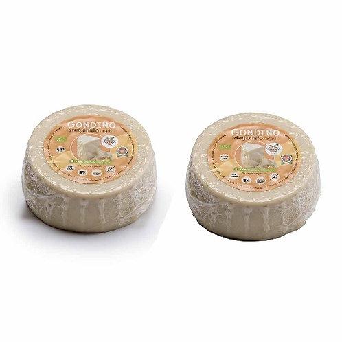buy seasoned gondino pangea online shop