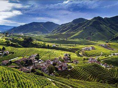 shop-online-prosecco-wine