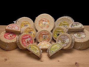 buy-gondino-italian-vegan-cheese-pangea-