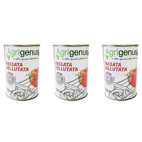 san marzano tomater italy italia italian tomatoe