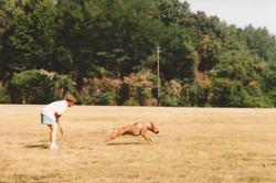 Max Kustom K9 Training Chesapeake
