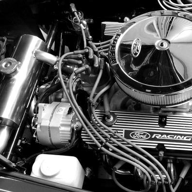 Fresh Ford 302 V8 install in GD Cobra