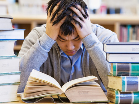 Student Stress in Business Schools:  For What?!
