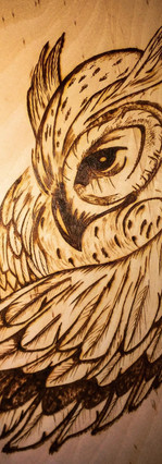 Owl Burning