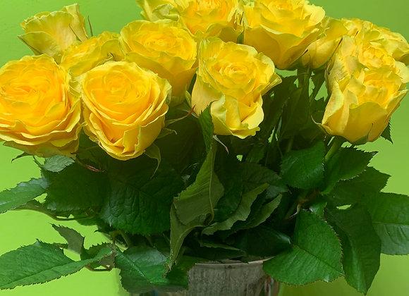 Роза Илиос 50 см.