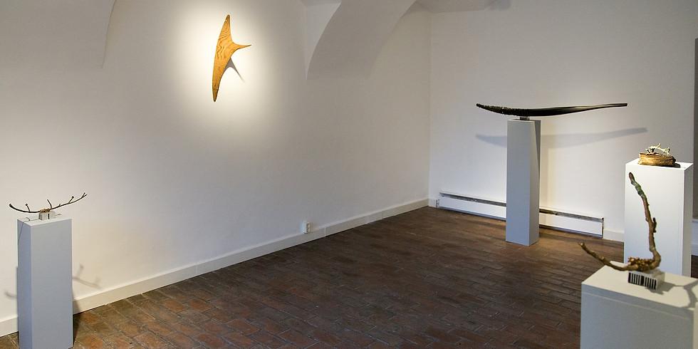 Natura morta - Gálhidy Péter kiállítása