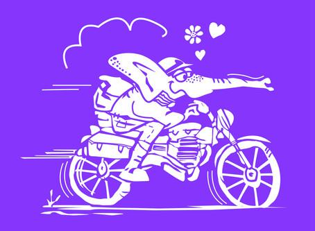 Afinal, moto é terapia ou não?