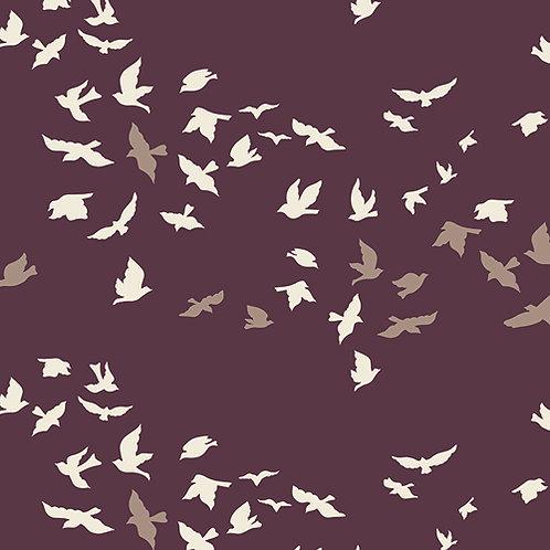Aves Chatter Dim