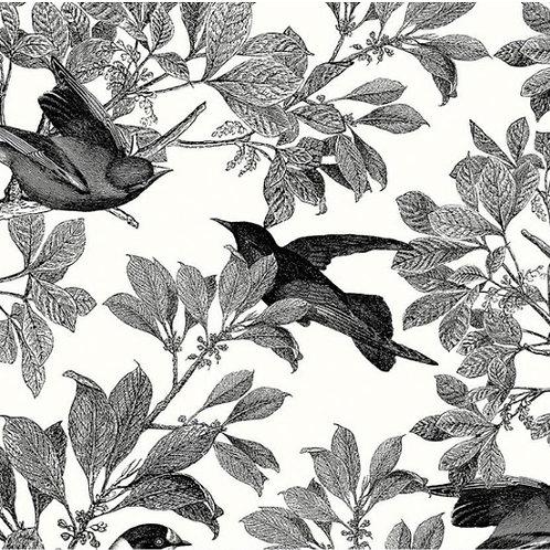 Classic Caskata Birds