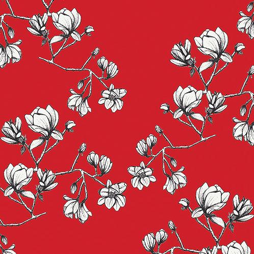 Magnolia Study Silkroad