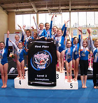 gymnastics team Signal School of Physical Education