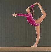 gymnastics Signal School of Physical Education