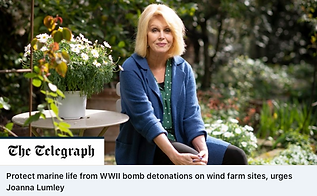 The Telegraph - Joanna Lumley.png